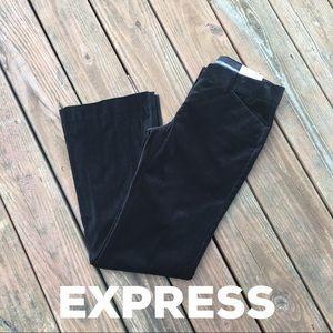 NWT Express Editor Fit Velvet Dress Pants